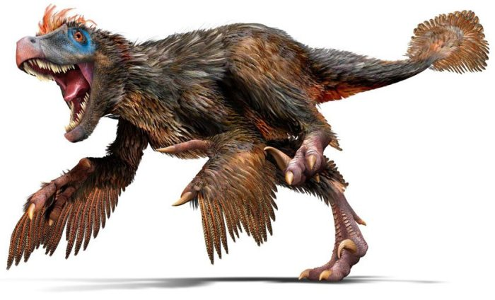 Dinosaur-with-Feathers